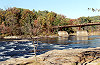 A Tree Bare of Leaves in Early Autumn at Ohiopyle Picture Thumbnail