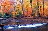 Dunbar Creek