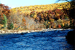Majestic Ohiopyle State Park in Autumn Color Picture Thumbnail