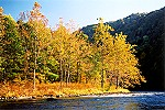Autumn Along the Youghiogheny River