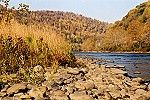 A Youghiogheny River Island Colored by Autumn Picture Thumbnail