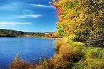 Autumn Along Cranberry Glade Lake's Shoreline Picture Thumbnail