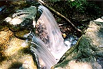 Looking Down on Linn Run State Park's Adam Falls Picture Thumbnail