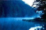 Morning Mists & Fog at Laurel Hill State Park Picture Thumbnail