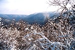 Wintry Youghiogheny River Gorge From Baughman's Overlook Picture Thumbnail