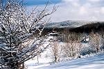 A Heavy Snowfall Along the Slopes of Laurel Ridge Picture Thumbnail