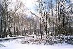A Winter Scene in Bullskin Township, Fayette County Picture Thumbnail
