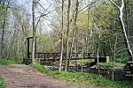 Spring Flourishes Along a Trail Bridge in Cedar Creek Park Picture Thumbnail