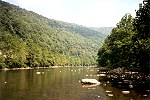 Rocks in the River Deep Within the Youghiogheny Gorge Picture Thumbnail
