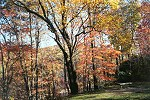 An Autumn Scene on the Youghiogheny River Trail Picture Thumbnail