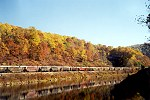 Freight Train Along the Youghiogheny River in Autumn Picture Thumbnail