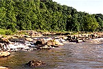 Youghiogheny Rapids Sparkling in Morning Sunlight Picture Thumbnail