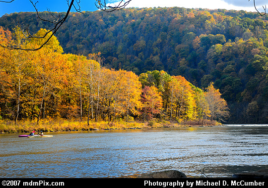 Kayaking Down the Youghiogheny River in Autumn Picture
