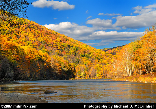 Youghiogheny River South of Ohiopyle With Autumn Color Picture