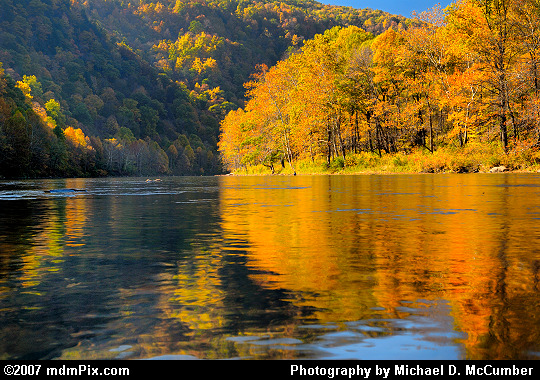 Laps of Youghiogheny Water Reflecting Autumn Foliage Picture