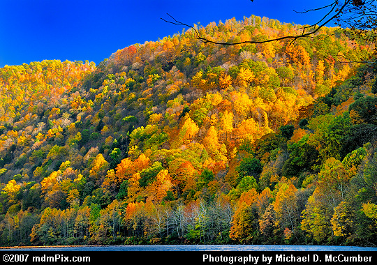 Gorges Carved in Chestnut Ridge Featuring Fall Foliage Picture