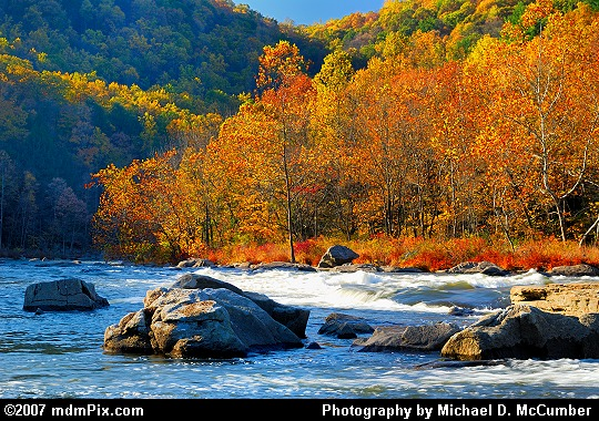 River Rapid Sparkling in the Evening Sun at Ohiopyle Picture
