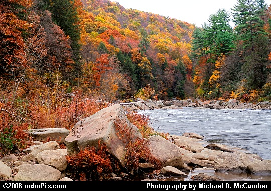 Cloudy Autumn Scene Along the Youghiogheny River Picture