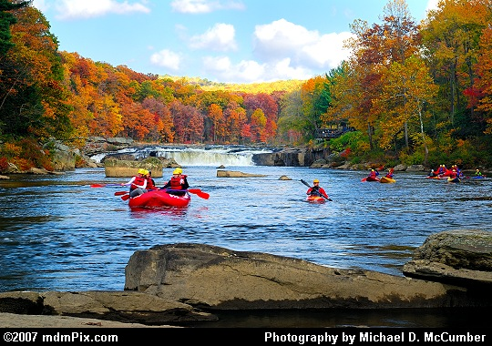 White Water Rafts & Kayaks Entering After Ohiopyle's Falls Picture