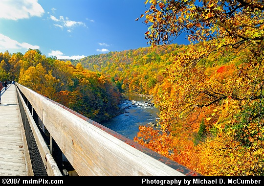 Fall Foliage Abounds Along a Youghiogheny River Trail Bridge Picture