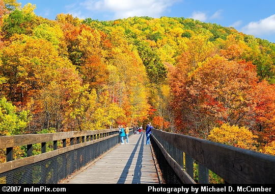 Observers Awestruck by Autumn Foliage on a Trail Bridge Picture
