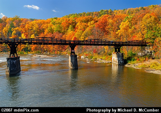 Youghiogheny River Trail Bridge Back Dropped by Autumn Picture