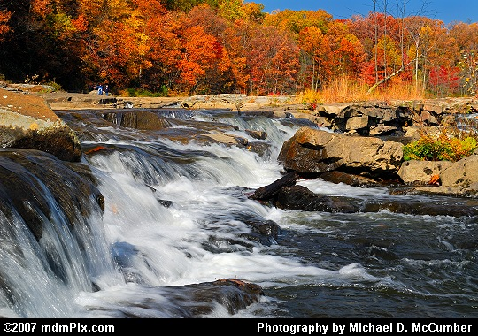 Wall of Red and Orange Vegetation above a Youghiogheny River Rapid Picture