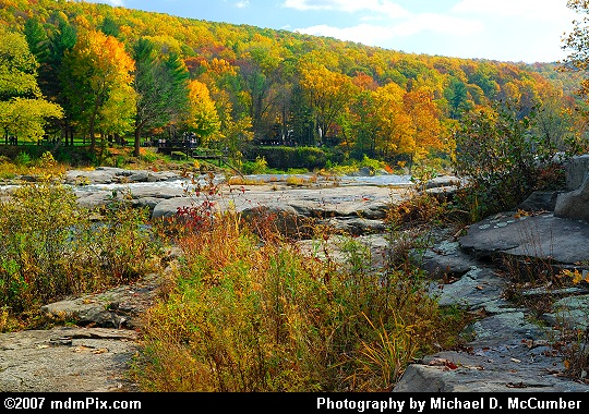 Golden Slopes on the Eastern Shore of the Youghiogheny Picture