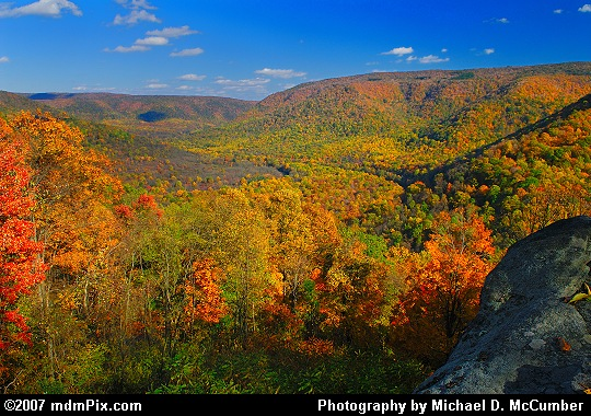 An Autumn Color Filled Vista from Baughman's Overlook Picture