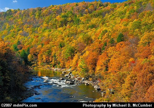 Trail Bridge's Youghiogheny River Gorge View Picture