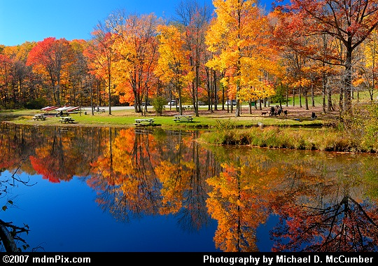 Afternoon Autumn Reflections on Laurel Hill Lake Picture