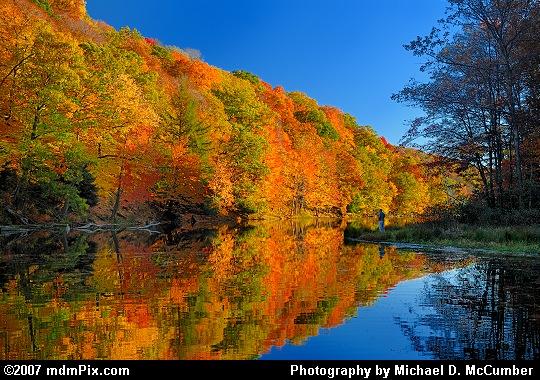 Fall Reflections Surround a Small Peninsula in Laurel Hill Lake Picture