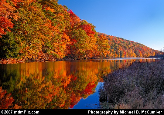 Fall Foliage Reflections along Laurel Hill Lake's Shore Picture