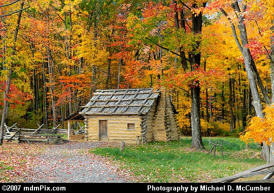 A 1700s Style Settler's Cabin Nestled in a Forest of Autumn Picture